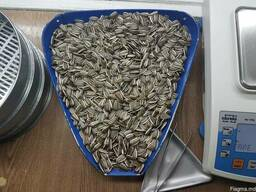 "Striped sunflower seeds ""Konfeta CL"""