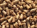 Distiller's dried grains (draff) - фото 1