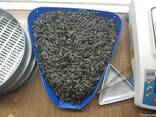 Black sunflower seeds - photo 2