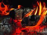 Фруктовый уголь - фото 2