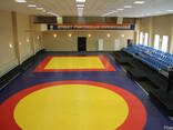 Гимнастический мат, борцовский ковёр, боксёрский мешок - фото 1