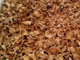 Гриб лисичка в сушеном виде - фото 2
