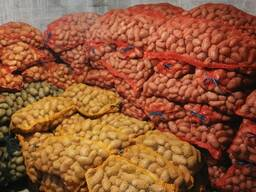 Картофель 60-120