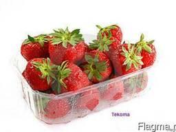 Пластиковая тара для ягод, упаковка для ягод, пинетка для ягод