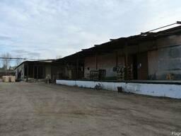 Продаются производственно-складские помещения (Бируинца) - фото 2