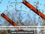 Решетчатые заборы из оцинкованной проволоки. Еврозабор. Gard - фото 4