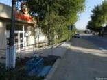 Сдается в аренду помещение в стороне от городской суеты неда - фото 2