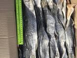 Stockfisch Рыба вяленая - фото 4
