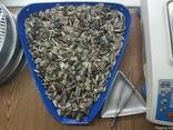 Sunflower seeds triomix (striped and black). - photo 1