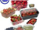 Тара для ягод, Лукошко для клубники, упаковка для клубники - фото 1