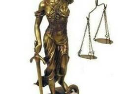 Услуги в области административного права
