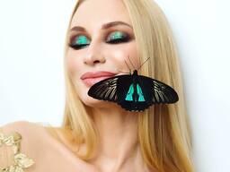 Живые бабочки подарить невесте, жене, любимой, девушке . ..